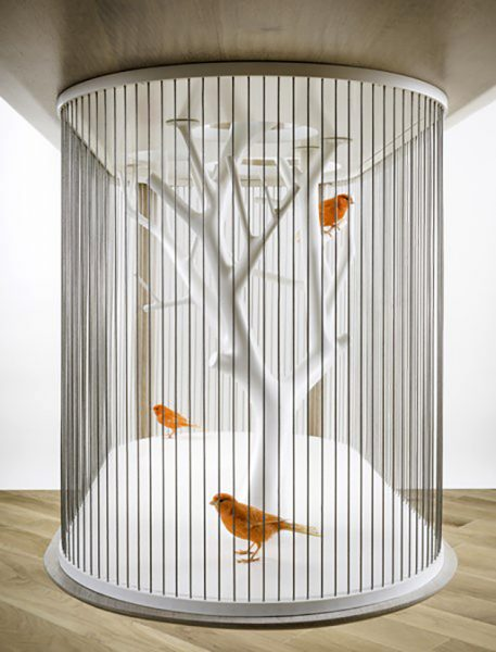 قفس های دکوراتیو خانگی برای پرندگان