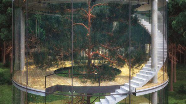 زندگی در استوانه شیشه ای در وسط جنگل